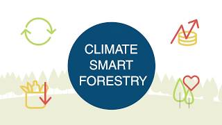 Climate Smart Forestry