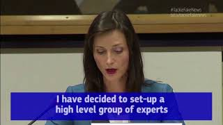 High-Level Expert Group on Fake News