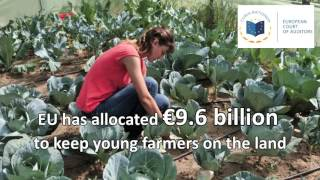 Support for young farmers must be better targeted, say EU Auditors