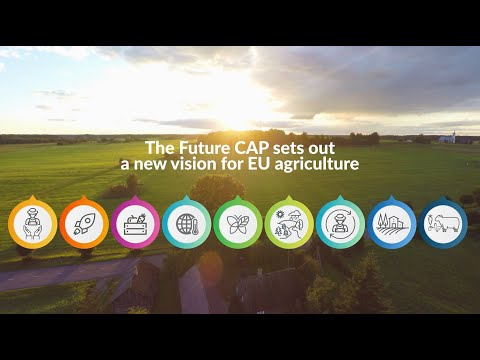 A sustainable Common Agricultural Policy for our future