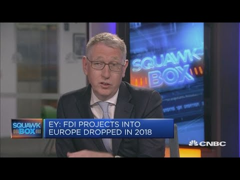 Foreign investment into Europe falls for first time in 7 years, EY finds | Squawk Box Europe