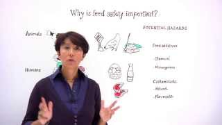 Safe use of feed additives