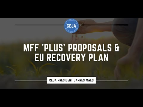 EU Recovery Plan and revamped MFF - CEJA President Jannes Maes