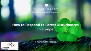 European Forest Institute Live Stream