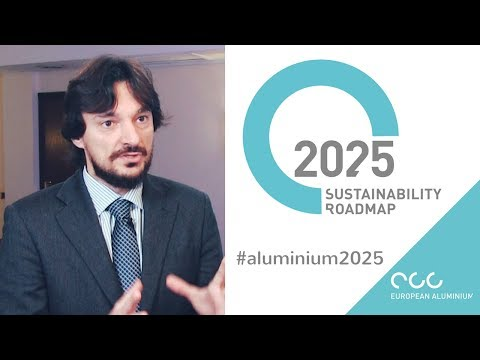 The Sustainability Roadmap towards 2025: where are we now?