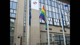 Installation of the rainbow flag at the Council building