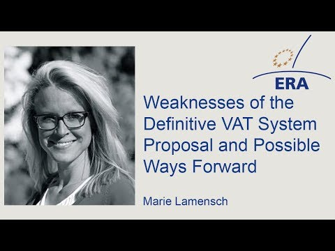 Weaknesses of the Definitive VAT System Proposal and Possible Ways Forward