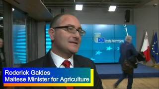 'We will brainstorm on the future of the Common Agricultural Policy' #EU2017MT