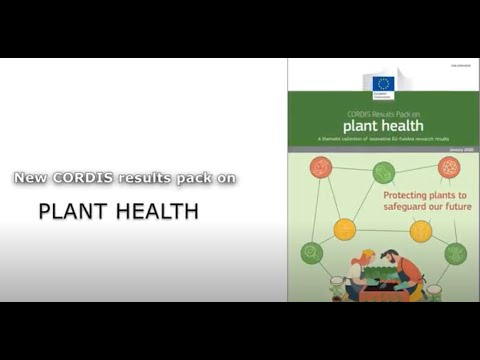 Plant health: Protecting plants to safeguard our future